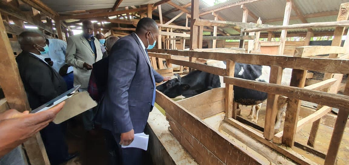 Dairy Sector set for radical shift